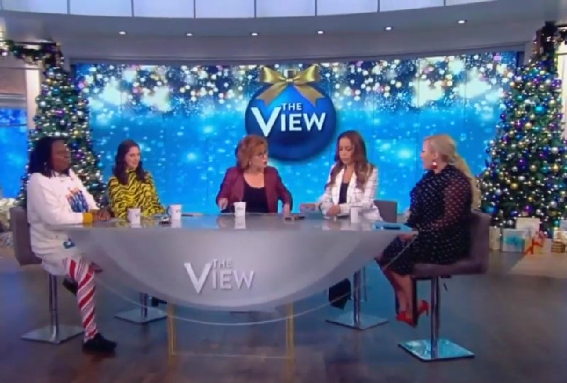 Meghan McCain and Joy Behar Absolutely Tear Into Each Other: 'I Don't Care What You're Interested In!'