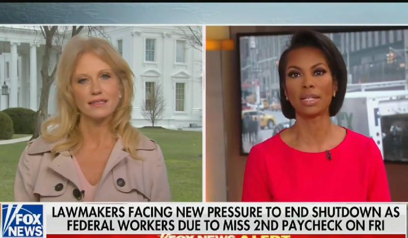 Kellyanne Conway Sputters When Fox's Harris Faulkner Grills Her On Trump Ending Shutdown
