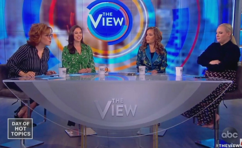 The View's Joy Behar Tells Meghan McCain: 'If You're Going to Have a Hissy Fit, We Can't Continue'