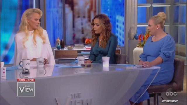 Meghan McCain Attacks Pam Anderson Over Julian Assange: 'He's a Cyberterrorist!'