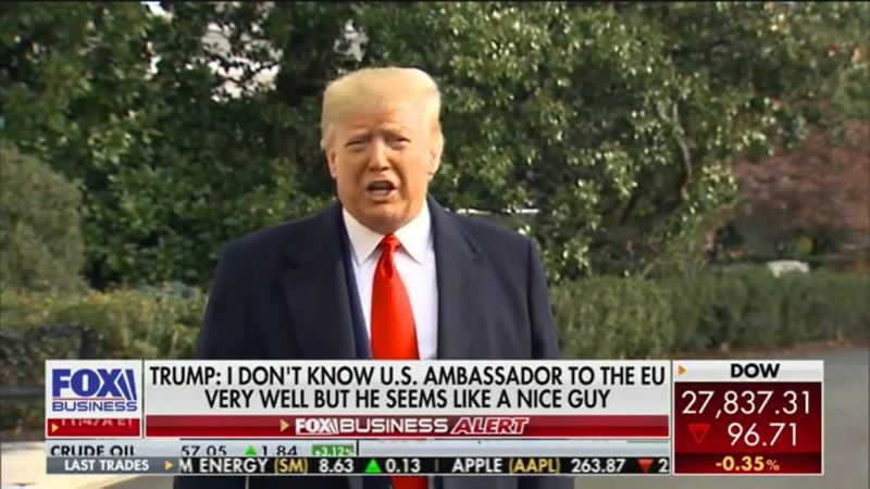 Trump: Sondland Was Screaming at Me 'What Do You Want from Ukraine?'