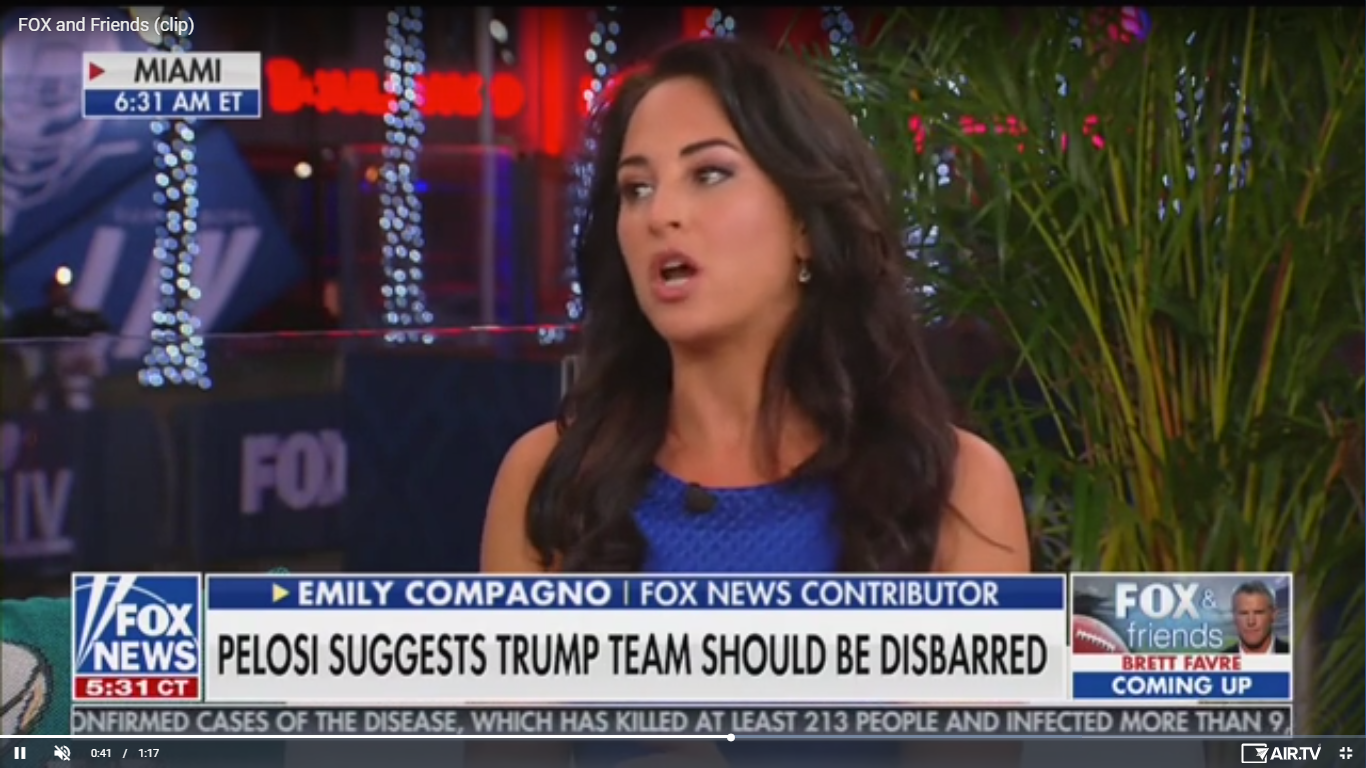 Fox News' Contributor: Impeachment Is 'Antithetical to Our Criminal Justice System'