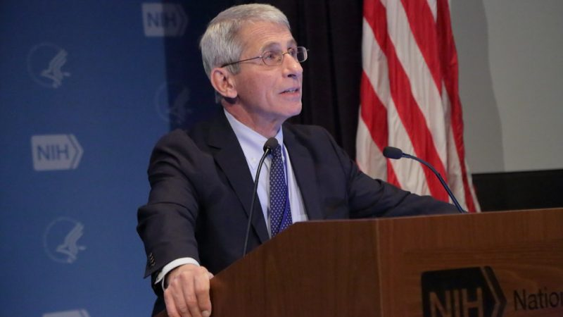 Dr. Fauci Will Tell the Senate that Reopening the Country Too Soon Will Cause 'Needless Suffering and Death'