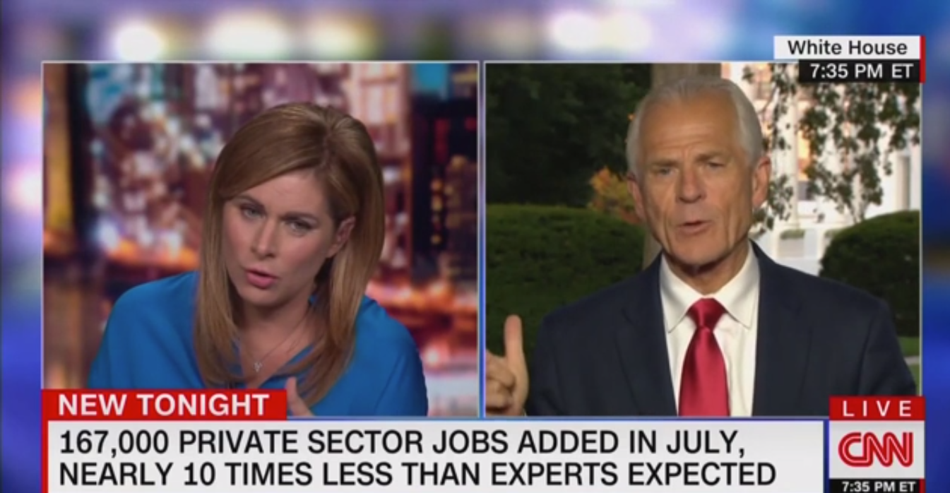 Peter Navarro Cites Creator of 'Dilbert' to Prove Doctors Wrong on Hydroxychloroquine