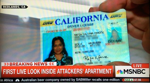 Cable News Hits Rock Bottom As Reporters Barge Into Syed Farook's Apartment For Ratings