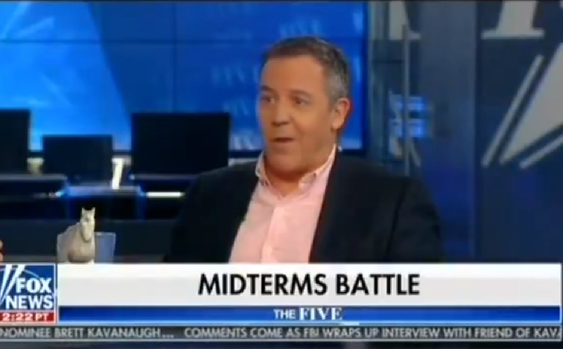 Fox's Greg Gutfeld: A 'Lot Of Mama Bears' Are Worried About Their Sons Amid Kavanaugh Allegations