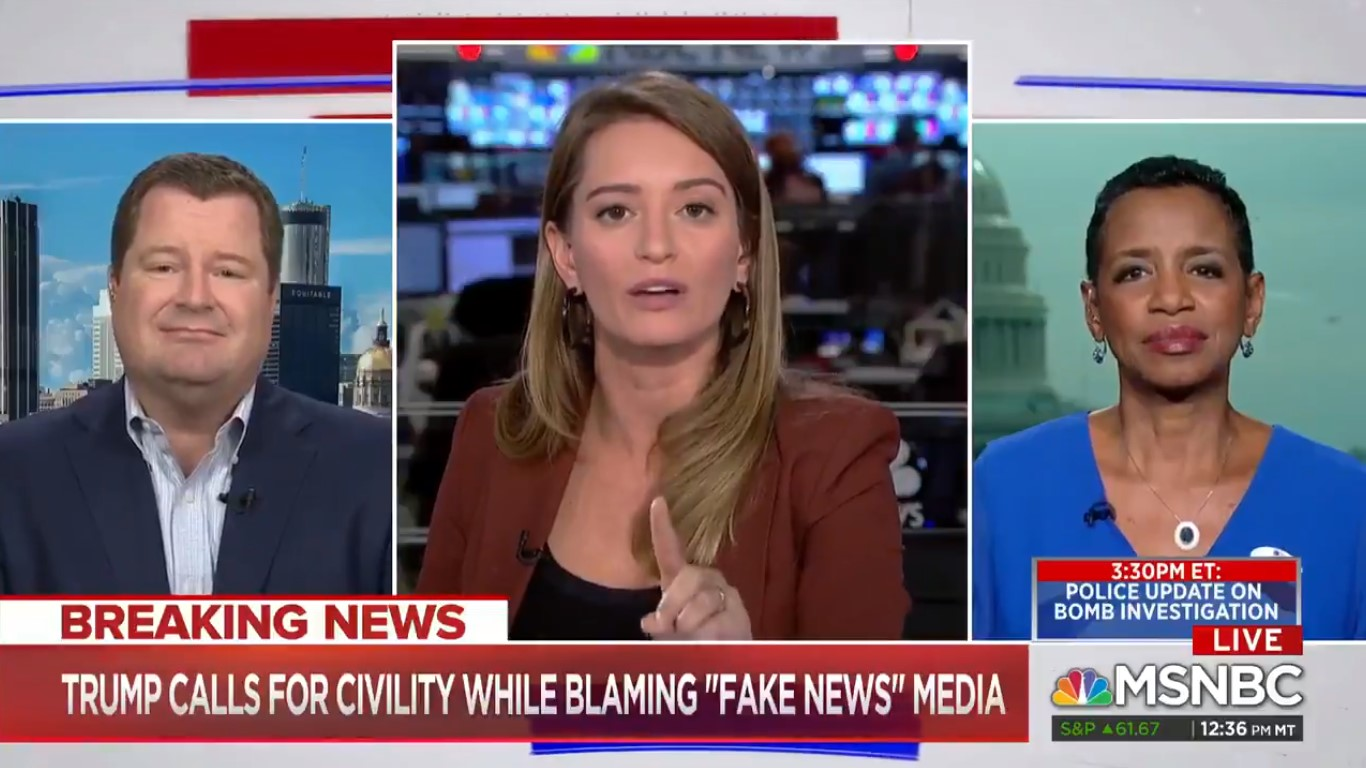 'This Is My Show!' MSNBC's Katy Tur Blows Up At Erick Erickson During Discussion On Civility