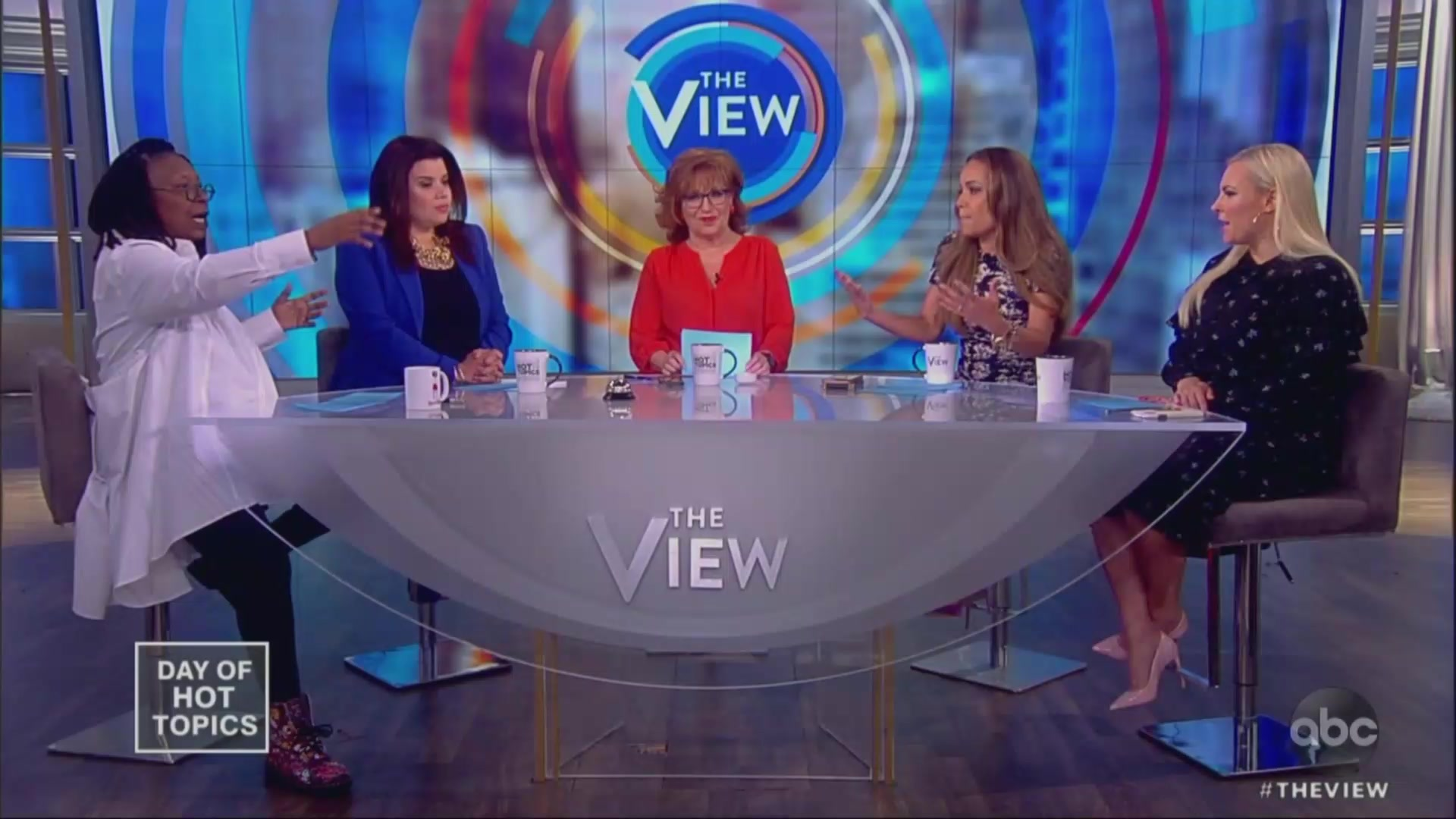 Whoopi Goldberg Chastises Meghan McCain for Saying Liberals Don't Believe in Science on Abortion