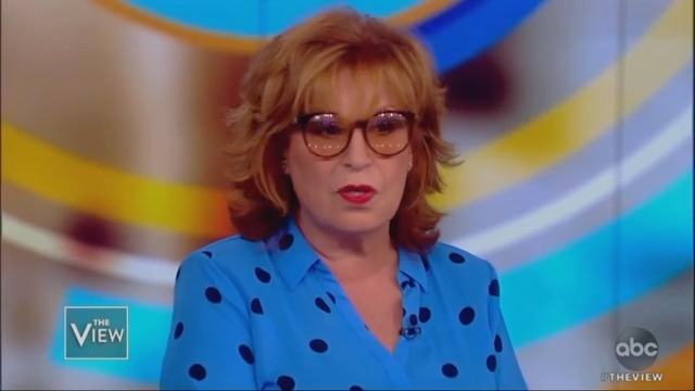 The View's Joy Behar Wants Stephen Miller Sent Back to 'Transylvania': 'He's a Scary Dude!'