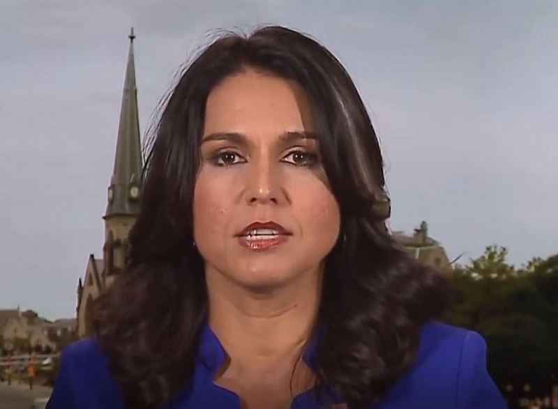 Tulsi Gabbard Accuses MSNBC Anchor of Using 'Talking Points' From Kamala Harris to Question Her