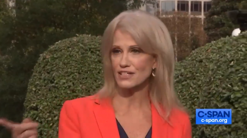 Kellyanne Conway on 'Washington Examiner' Reporter: 'If I Threaten Someone, You'll Know It!'