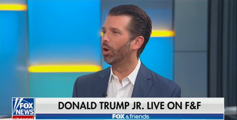 Donald Trump Jr.: Lt. Colonel Alexander Vindman Is 'A Leftist Veteran'
