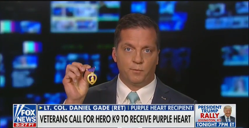 Veteran on 'Fox & Friends' Offers His Purple Heart to Dog Injured in al-Baghdadi Raid
