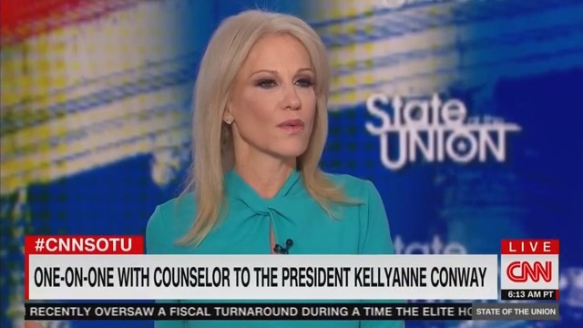 Kellyanne Conway Plays Dumb About Trump Disparaging Vindman, Taylor