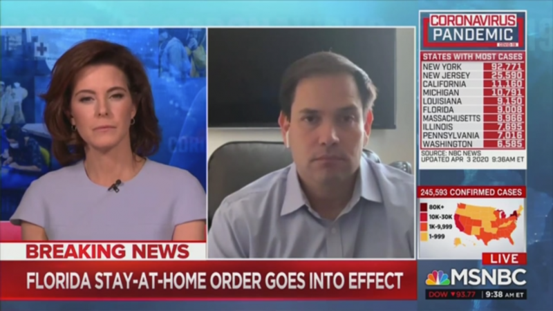 Stephanie Ruhle Grills Marco Rubio: 'What in the World is Going On' in Florida?