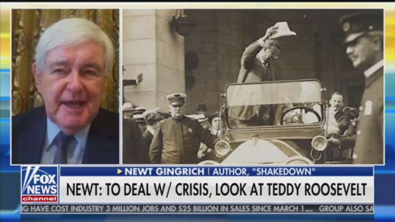 Newt Gingrich: Trump's Coronavirus Response 'Reminds Me a Lot of Theodore Roosevelt'