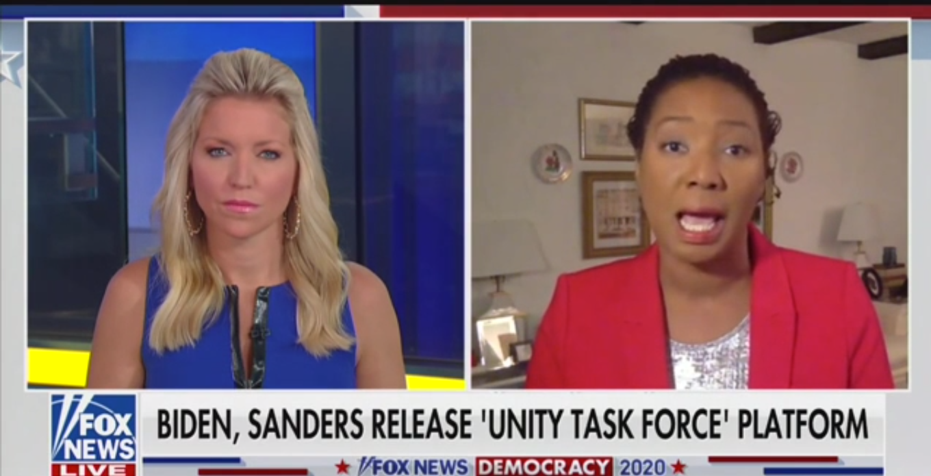 Fox News Guest: BLM Is 'Making Demands That the Father Leave the Home'