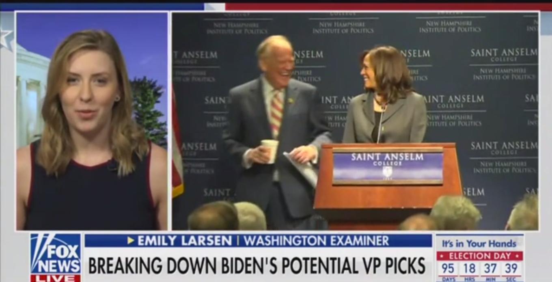Fox News Guest: Kamala Harris Is an 'Eloquent Speaker' And an 'Attack Dog'