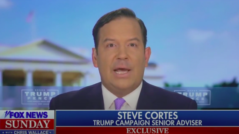 Chris Wallace Confronts Trump Adviser on President's Coronavirus Response: 'It's a False Choice You're Making'