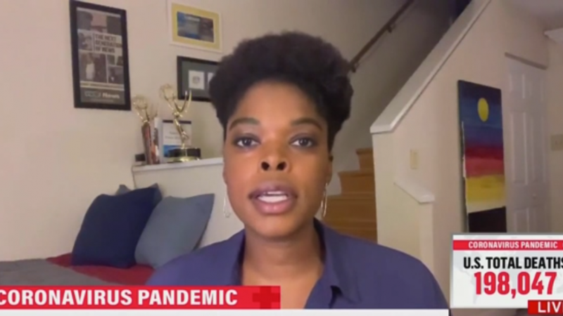MSNBC Contributor on Vaccine by November: 'Science Isn't Magic'